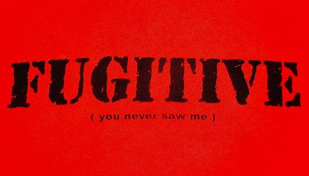 fugitive - you never saw me
