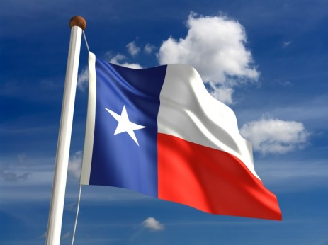 Texas flag in the sun