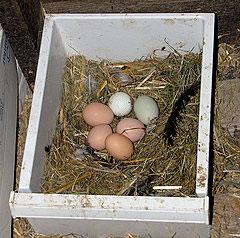 Nesting drawers