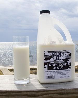 Raw milk jug