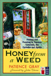 Honey from a Weed