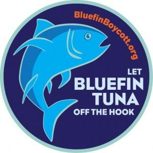 Bluefin boycott