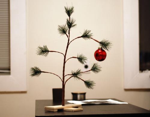 Sad little Christmas tree