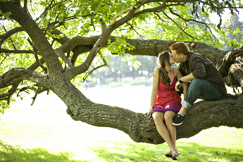 Couple kissing in a tree