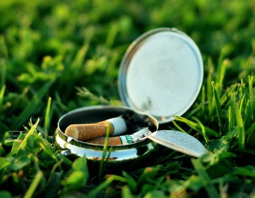 Cigarettes on lawn