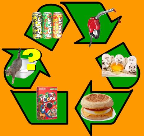 Recylcing of foods