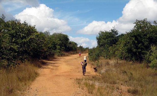 Zambia road