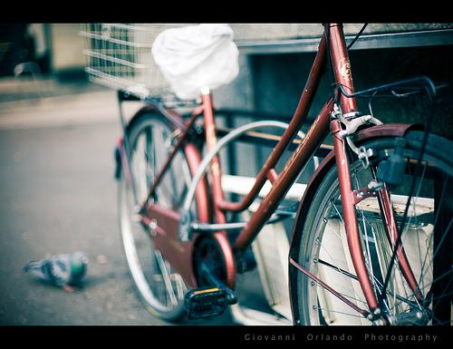Bike close-up