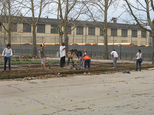 Workers at urban farm.