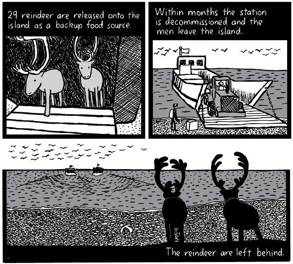 St. Matthew Island comic