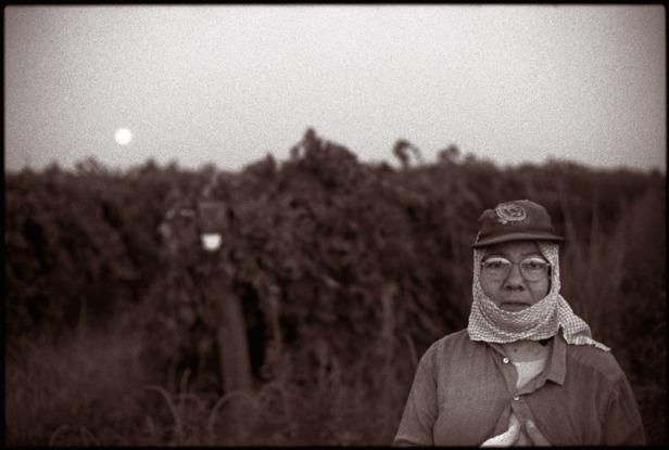 Grape farmworker
