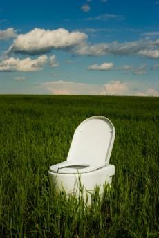toilet in a grassy field