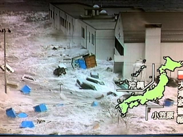Screengrab of tsunami