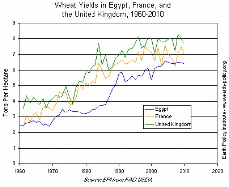 Wheat Yields in Egypt, France, and the United Kingdom, 1960-2010