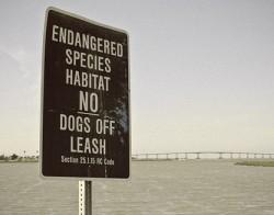 """""""endangered species habitat"""" sign"""