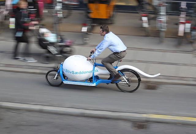 Sperm bike.