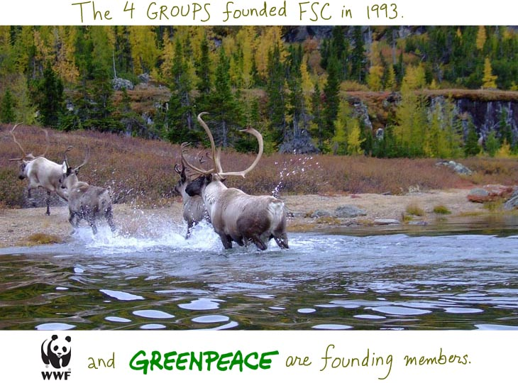 The four groups founded FSC in 1993. WWF and Greenpeace are founding members.