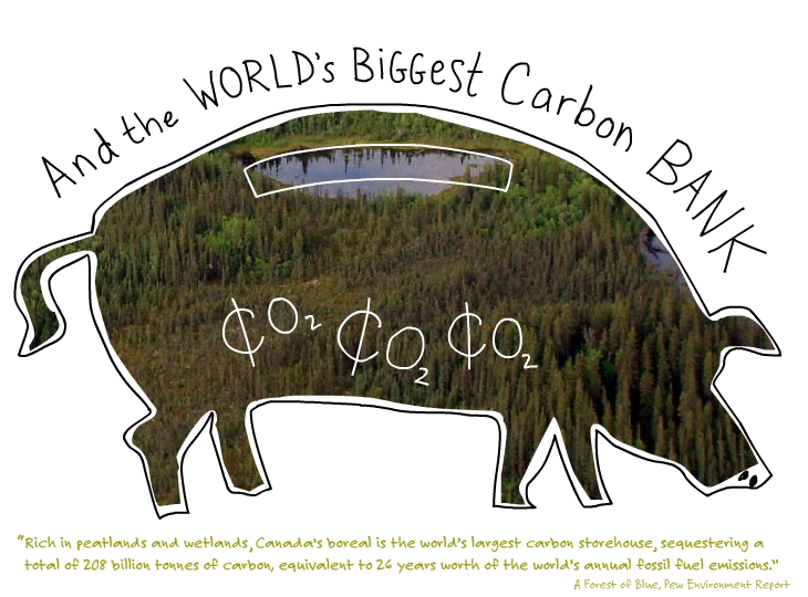 And the world's biggest carbon bank.