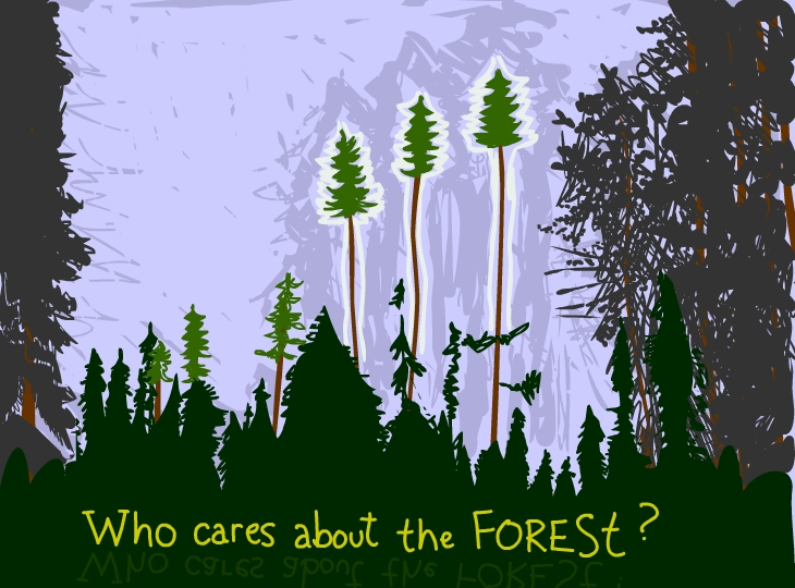 Who cares about the forest?