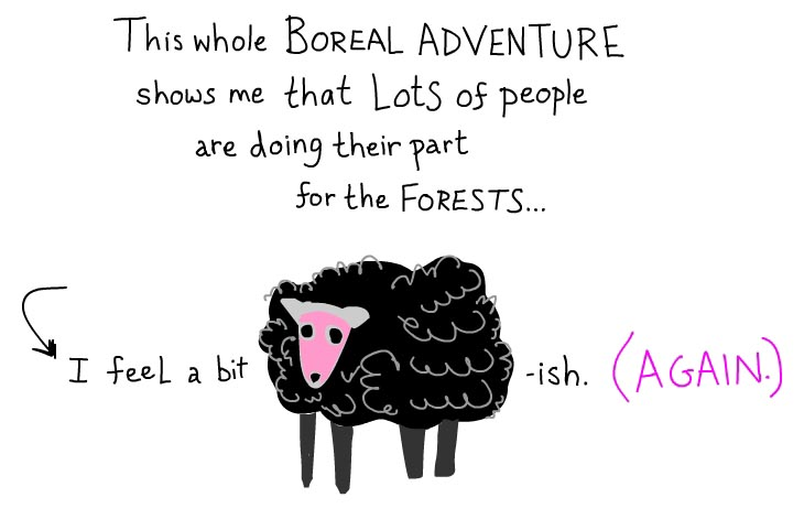 This whole boreal adventure shows me that lots of people are doing their part for the forests. I feel a bit sheepish again.