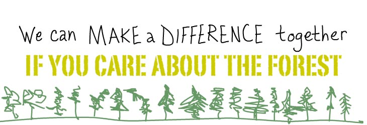 We can make a difference together if you care about the forest.