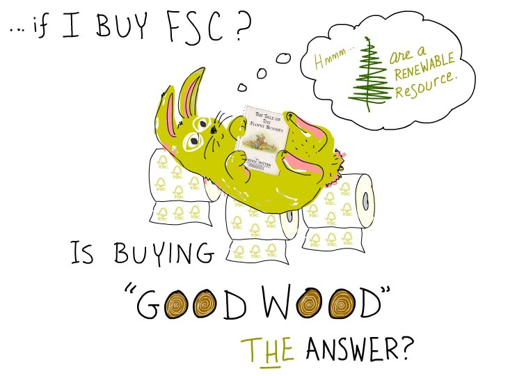 if I buy FSC? Is buying good wood the answer?