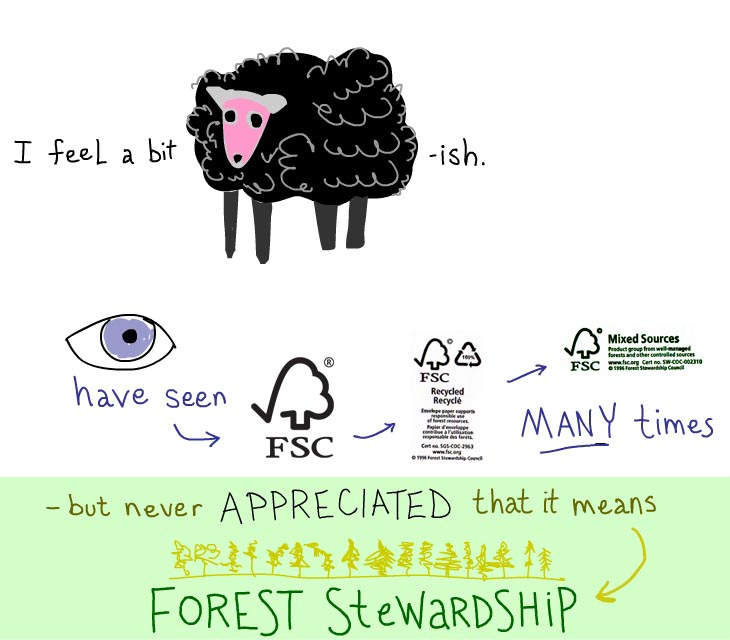I feel a bit sheepish. I have seen FSC many times but never appreciated that it means forest stewardship.