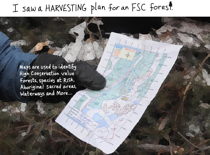 I saw a harvesting plan for an FSC forest.