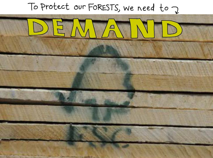 To protect our forests, we need to demand FSC.