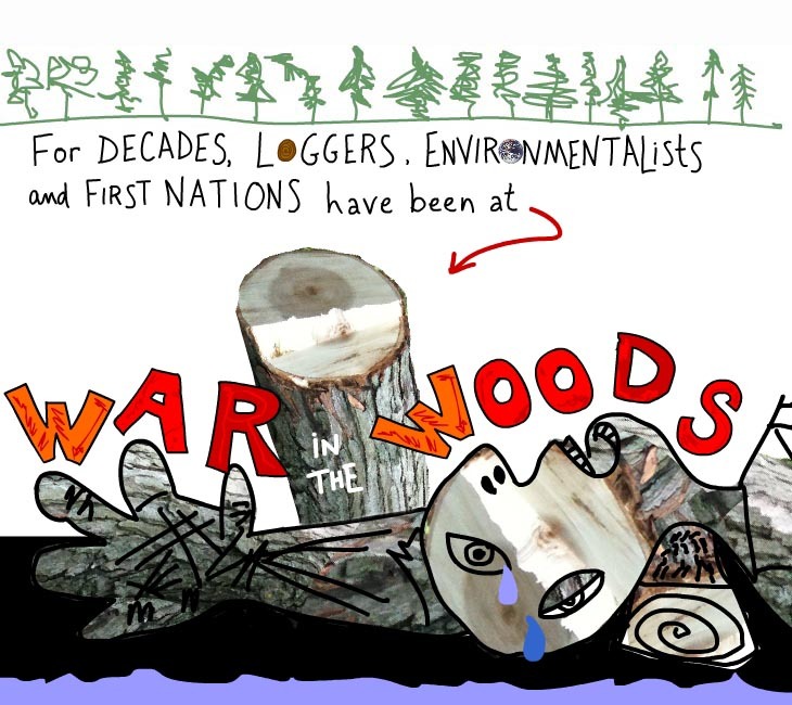 For decades, loggers, environmentalists, and first nations have been at war in the woods.