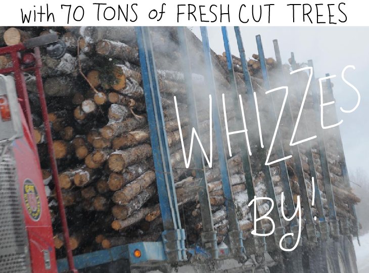 with 70 tons of fresh cut trees whizzes by.