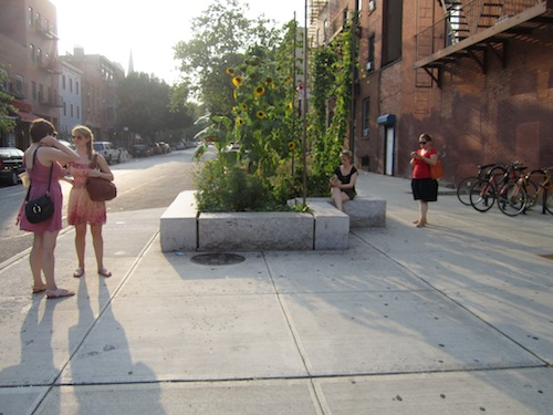 Bergen street planter