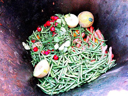 Food in Dumpster