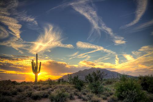 Scottsdale.