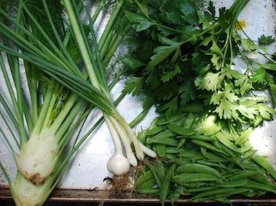 Peas, parsley, veggies