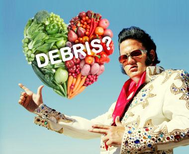 Elvis debris