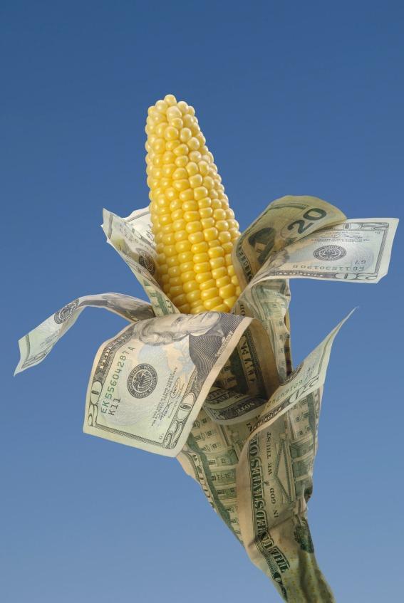 corn cash