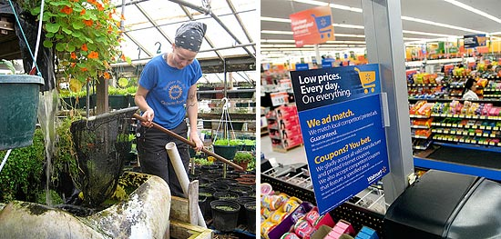 walmart_growing power