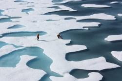 Image (1) arctic-sea-ice-ponds-flickr-nasa.jpg for post 48962