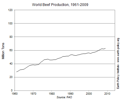 Graph on World Beef Production, 1961-2009