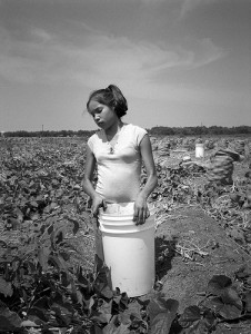 Young farmworker