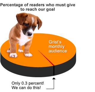 Puppy Chart