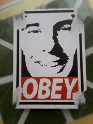 """Scott Walker """"Obey"""" Sign"""