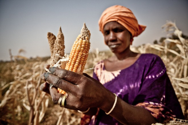 african-woman-corn-drought-oxfam