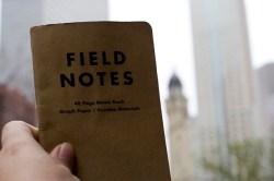 field_notes_luz