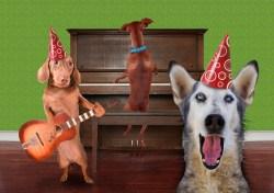 Happy howlingdays!