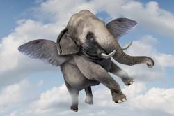 flying-elephant-sky