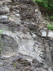 The eponymous Marcellus shale outcropping
