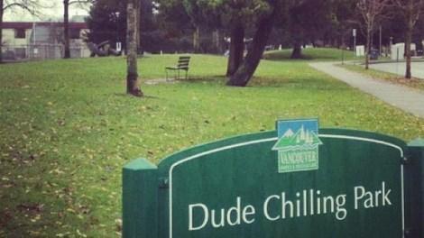 dude_chilling_park