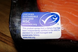 MSC fish label
